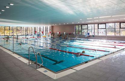Bild von Schwimmhalle Bühlau
